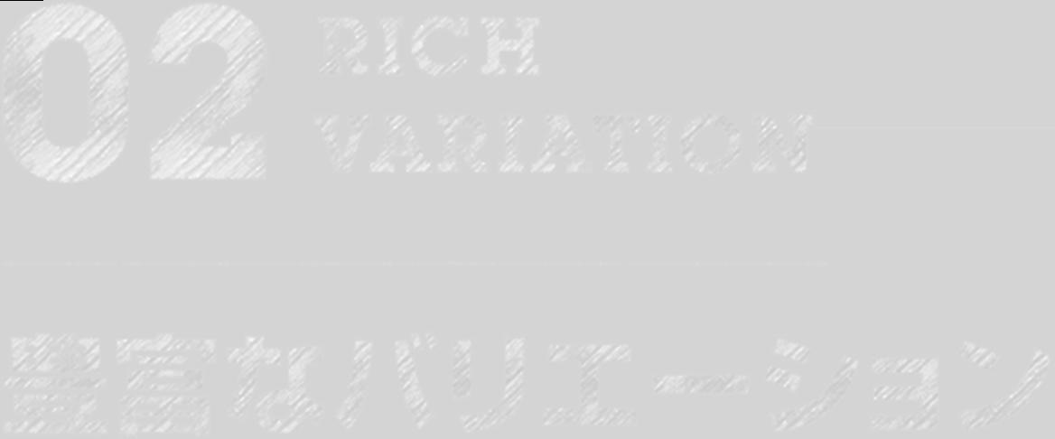 02 RICH VARIATION 豊富なバリエーション